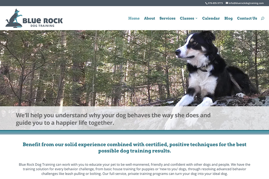 Blue Rock Dog Training website