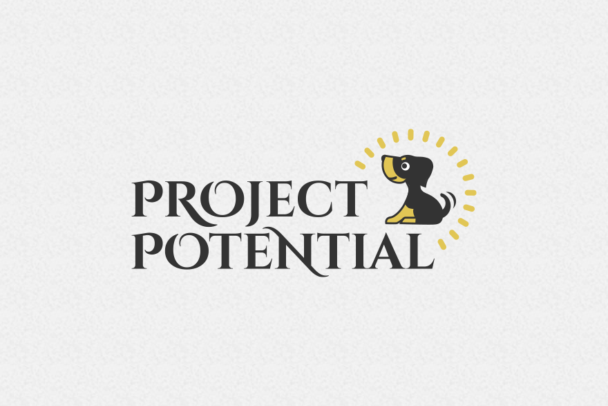 project potential logo